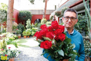 Jaume Vilaseca, roses singulars